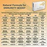 Zoom IMG-2 immunaid difese immunitarie 9 ingredienti