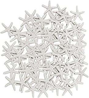 Anyumocz 40 Pcs Starfish White Resin Pencil Finger Sea Star for Wedding Party Christmas, Home and Craft Project