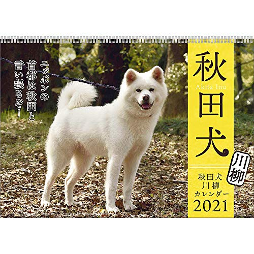 2021年 秋田犬カレンダー 1000115874 vol.016