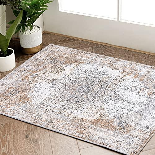 JINCHAN Door Mat 2x3 Persian Area Rug Vintage Doormat Traditional Rug for Kitchen Floorcover Soft Carpet Floral Printed Indoor Mat for Bathroom Bedroom Living Room Entryway Taupe