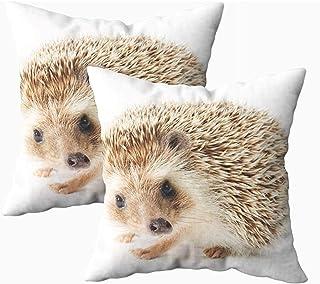 Ducan Lincoln Pillow Case 2PC 18X18,Funda De Almohada De Arte,Fundas De Almohada De Tiro Cuadrado Cute Hedgehog Fondo Blanco Cojín De Ambos Lados