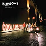 Songtexte von Blossoms - Cool Like You