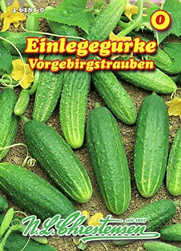 Einlegegurke, Vorgebirgstrauben N.L.Chrestensen Samen 461810-B