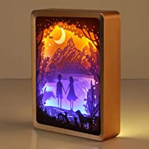 Best shadow box light kit Reviews