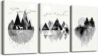 Wall Art for living room Canvas Prints Artwork bathroom Wall Decor Black and white Abstract Mountain geometric and animal Watercolor painting 3 Pieces Framed bedroom wall decorations Office Home Decor
