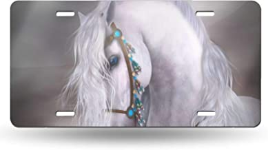 chaqlin Funny License Plate Horse Pattern for Cars Truck Trailer Bicycle,Novelty Metal License Plates Auto Front License Plate Tags Bracket 12.2 x 6.3 Inch