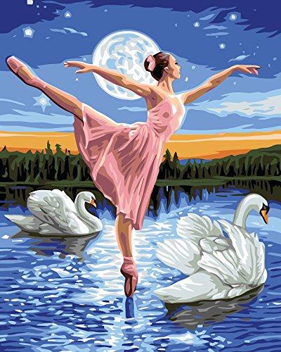 Fuumuui Lienzo de Bricolaje Regalo de Pintura al óleo para Adultos niños Pintura por número Kits Decoraciones para el hogar-Cisnes y Ballet 16 * 20 Pulgadas