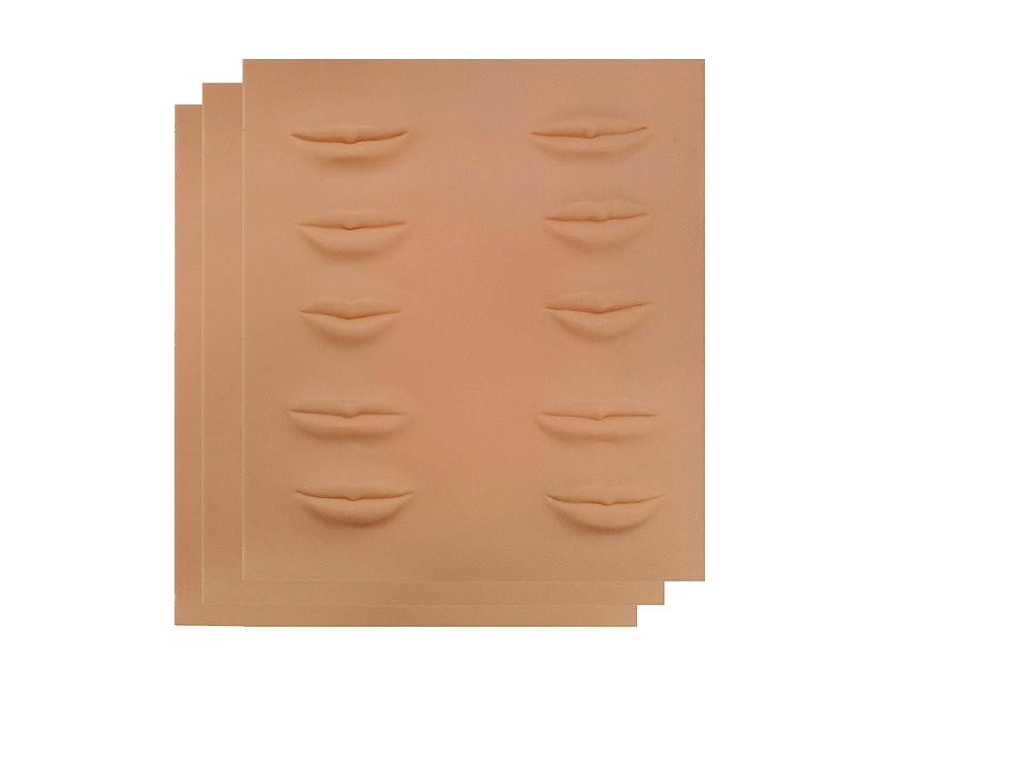 電気的インフラ郵便番号アートメイク 入墨 タトゥ メイク 練習 シートマット リップタトゥー 練習ゴムシートアートメイク材料 リップ (1枚~10枚) (3枚)