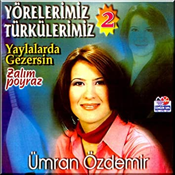 Yörelerimiz Türkülerimiz, Vol. 2