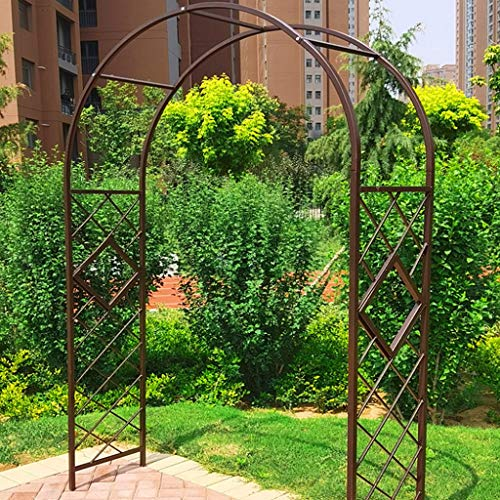 Garden Arch, 2.3m in Height, Archway as Support for Climbing Plants, Iron