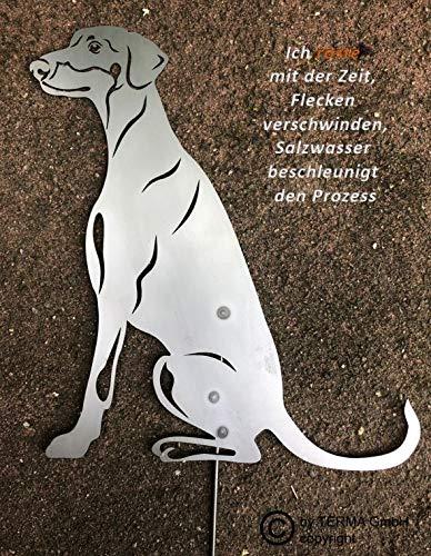 Dobermann Gartenfigur höhe 30 cm (50 cm mit Spieß), Edelrost Hund, Rostfigur, Rost Figur