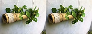 Ecopal Bamboo Hanging Planter With Adjustable Rope, Average length is from 40cm - 55cm. Diameter is 8cm - 12cm, 2 Pieces