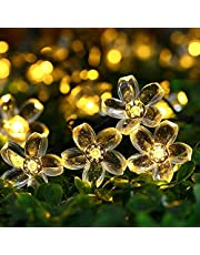 20 LED Flowers String Lights, Indoor/Outdoor, Fairy Light for Diwali Christmas/Patio/Garden/Party Decorations (Warm White)