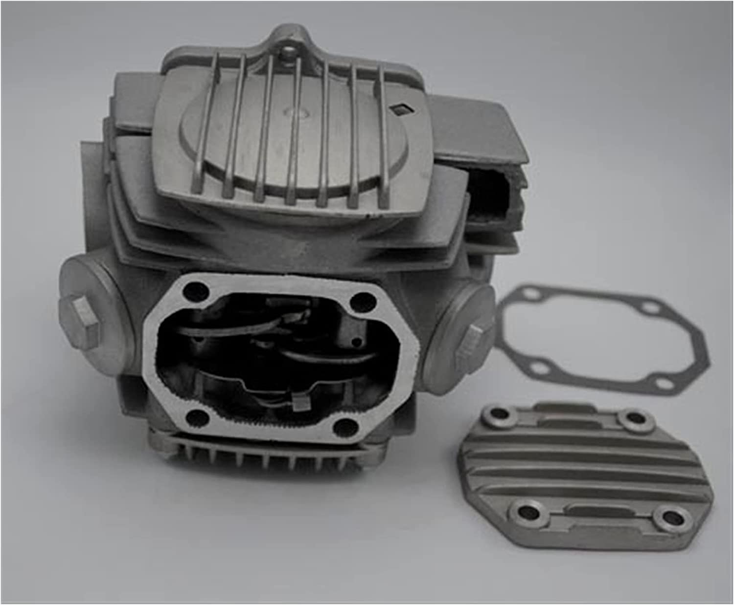 ZhuFengshop 0303031A 110CC for Alpha C Engine Motorcycle Clearance High order SALE Limited time 1P52FMH