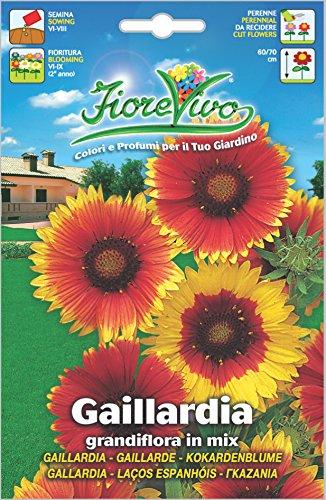 Hortus 60SDFG014 Fiorevivo Gaillardia Grandiflora, Mix, 13x0.2x20 cm
