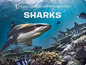 Sharks (Science for Toddlers)