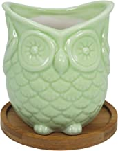 Gemseek Green Ceramic Owl Succulent Pot Planter, Single Cute Animal Shaped Cactus Flower Container Bonsai Holder with Bamboo Drainage Tray for Indoor Home Décor