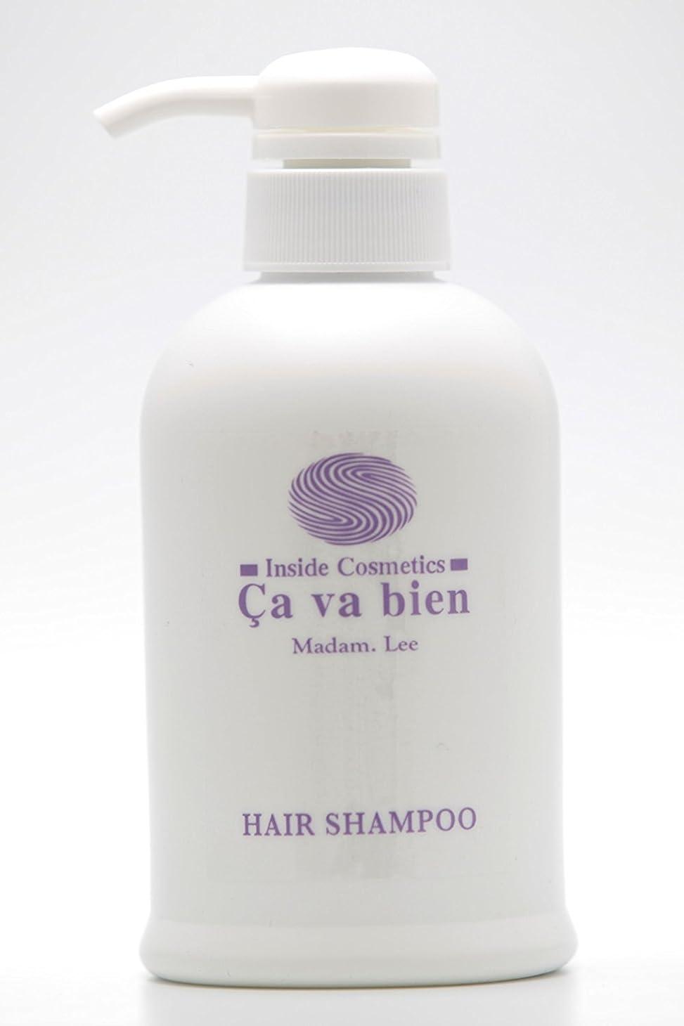 の面では規則性嫌がらせアミノ酸シャンプー Hair Shampoo