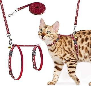SCIROKKO Katzengeschirr und -Leine, Verstellbarer, fluchtsicherung Brustgurt mit Sicherheitsschnalle fr das Gehen im Freien, passend fur kleine, mittelgroe Katzchen, im Dunkeln Leuchtend