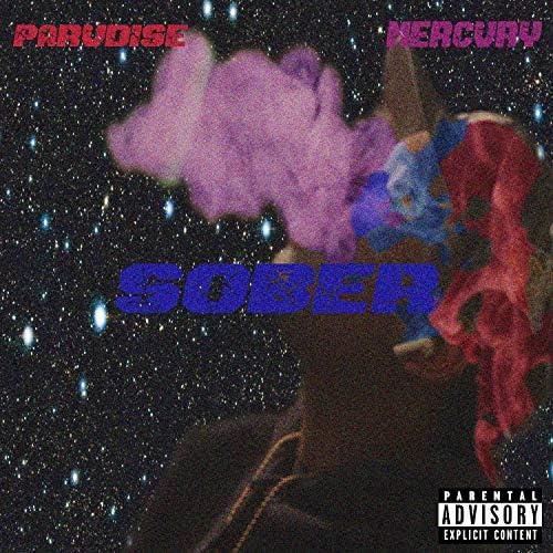 Saint Parvdise feat. Mercvry