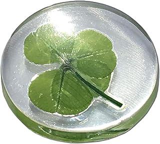 Trébol de cuatro hojas real, símbolo de bolsillo de buena suerte, conservado, 3.2 cm