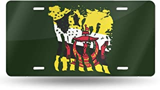 """NOT Flag of Brunei License Plate 6"""" X 12"""" Inch Novelty License Plate Frame Vanity Tag Aluminum Car Plate 4 Hole"""