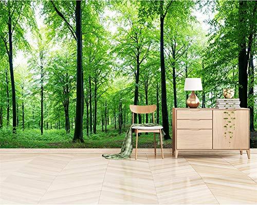 BHXIAOBAOZI behang fotobehang aan elke grootte aanpassen, 3D wallpaper landschap en planten, groene oerwoud, wooncultuur voor woonkamer, sofa, tv, achtergrond, slaapkamer, wanddecoratie (-Bh0594) 280cm(W)×180cm(H)