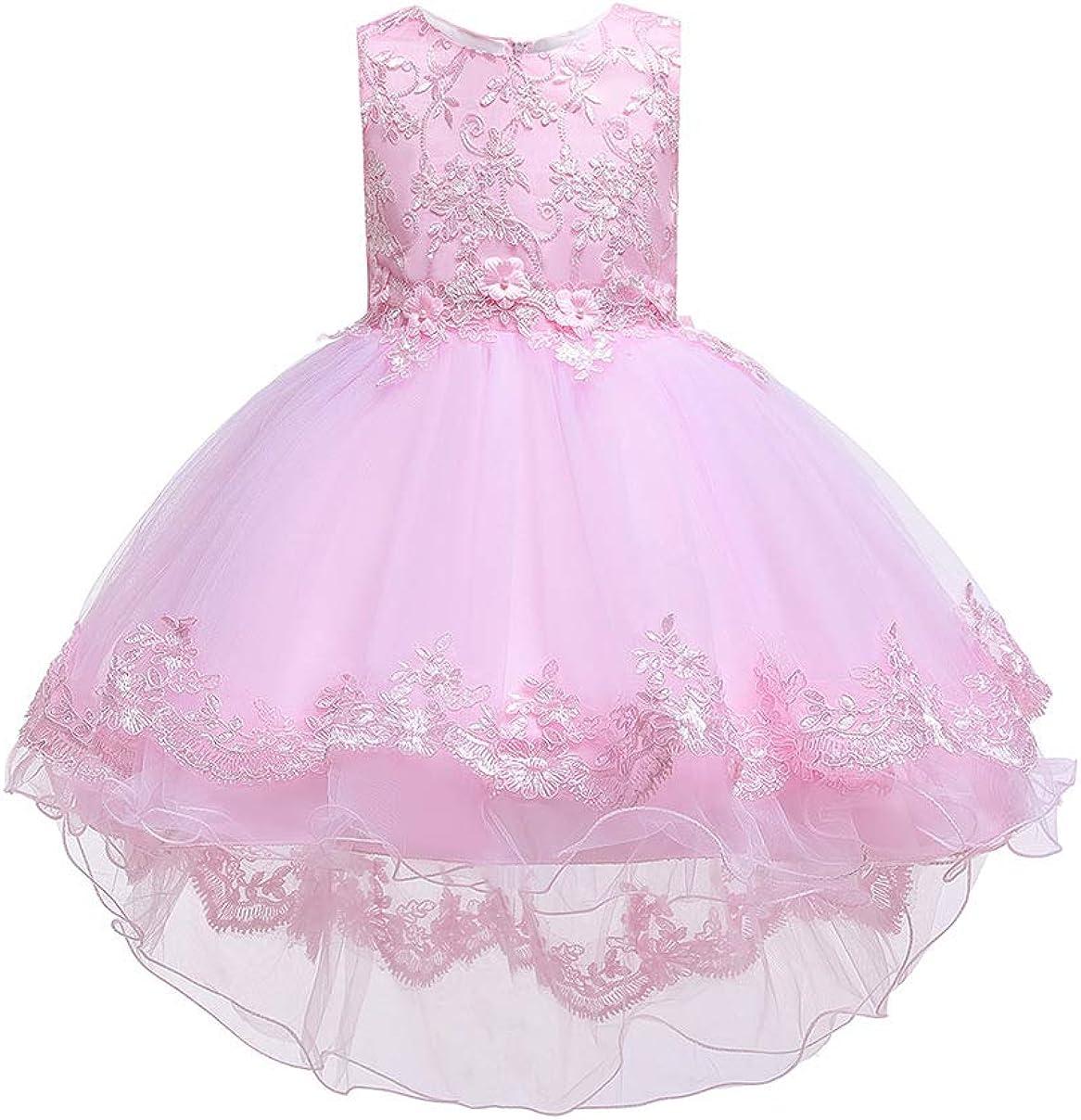 TYQQU Girls Sleeveless Embroidery Dress Tulle Mesh Gown Elegant Round Neck Princess