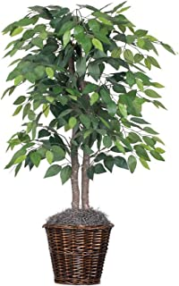 Vickerman 4-Feet Artificial Natural Ficus Bush with Dark Green Leaves in Decorative Rattan Basket
