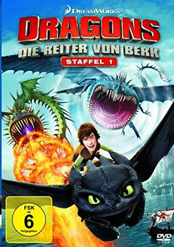Die Reiter von Berk (Staffel 1) (4 DVDs)