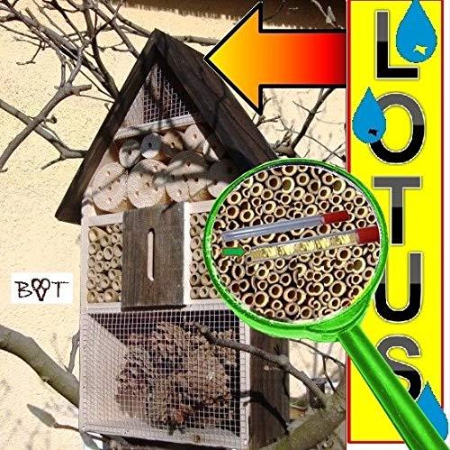 Insektenhotel - NEU MIT SCHMETTERLINGSHAUS, groß 50 cm mit Lotus-Effekt Oberflächen Beschichtung und 2 Sichtgläsern 8 und 11 mm, Beobachtungsröhrchen komplett mit Zellstoff und Füllmaterial für Nistkasten Schmetterling Haus Bienen Wildbienen Unterschlupf, schwarz anthrazit dunkelgrau Holz Nistkästen biologische Garten Insektenhäuschen, zum Hängen und Aufstellen geeignet