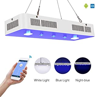 Amazon.es: pantalla led cob para acuarios