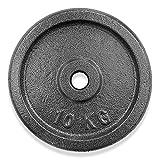 KVK FITNESS | Juego de discos de pesas de 20 kg – 2 x 10 kg de hierro fundido – Pesas de 30/31 mm para barras cortas y largas – Distribuidor alemán