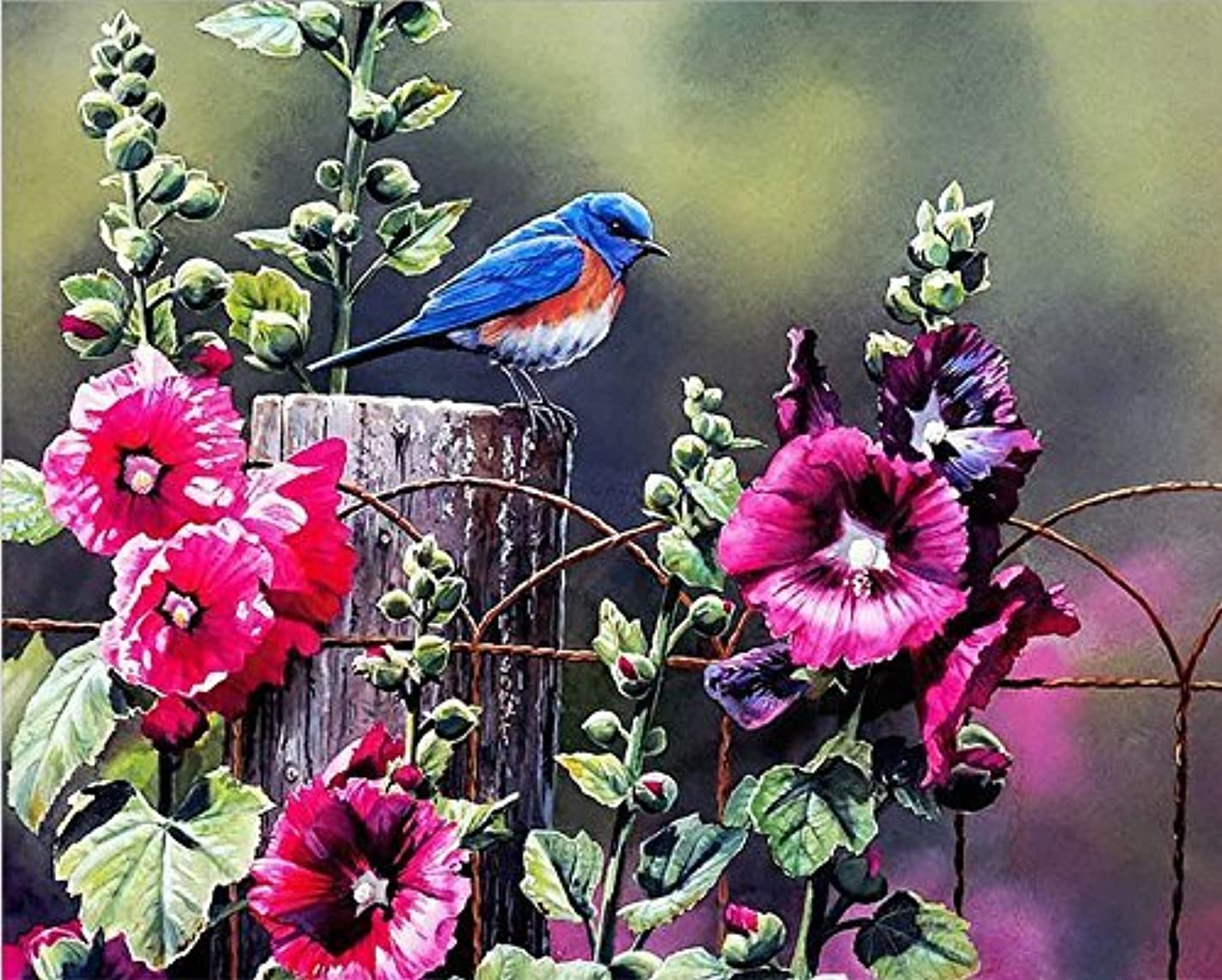 Lovebaby Oil Painting for Adults Kids Paint By Number Kit Digital Oil Painting Bird and Flower 16X20 Inches