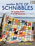 Another Bite of Schnibbles: 24 Quilts from 5' or 10' Squares (English Edition)
