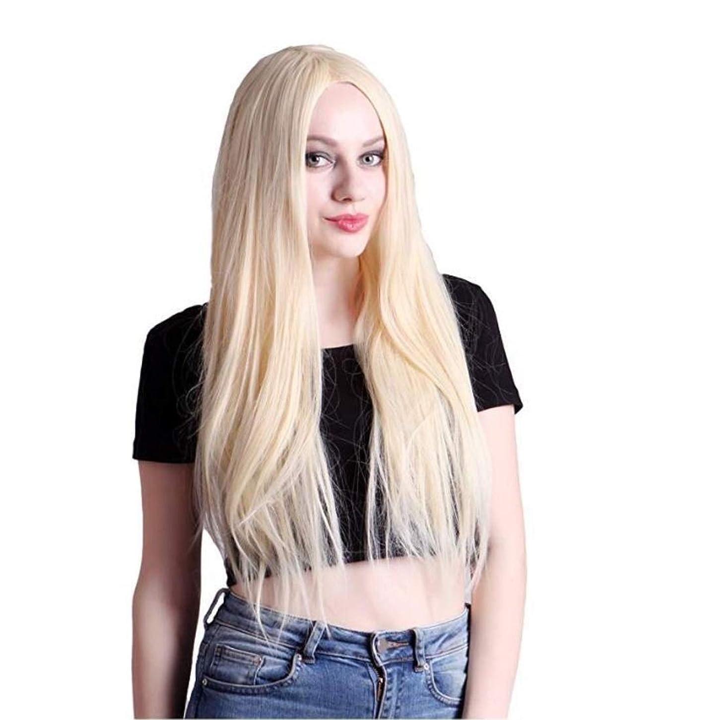 マイクロプロセッサ投げる保育園Kerwinner レディースウィッグ夏スタイルの完璧なヘアラインルートウィッグ人工毛フロントレースかつらすべての肌のトーンのシルクストレートヘア