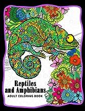 chameleon colouring book
