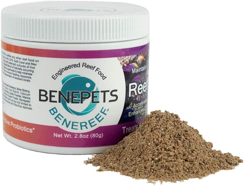 Benereef specialty Same day shipping shop 80g Jar