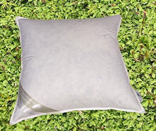 Betten Hofmann France Kissen Kopfkissen Federkissen 65x65 cm 30% Daunen strapazierfähig weich (550g Soft)