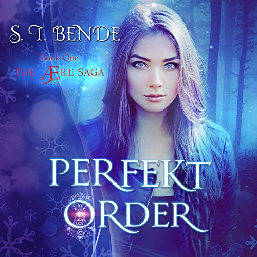 Perfekt Order audiobook cover art