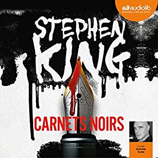 Carnets noirs audiobook cover art