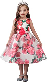 LLQKJOH Girl Dress Kids Ruffles Lace Party Wedding Bridesmaid Dresses