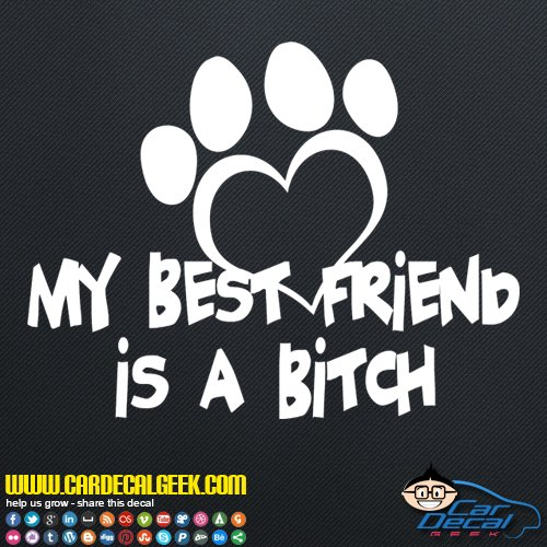My Best Friend is a Bitch   Dog Decal Vinyl Decal Sticker for Car Truck Window Laptop MacBook Wall Cooler Tumbler, Die-Cut/No Background, Multiple Sizes and Colors, 8-Inch, White