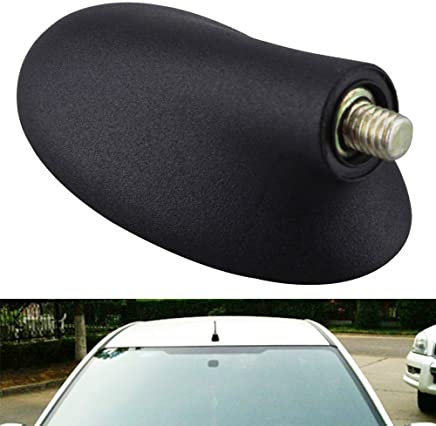 Zreal - Antena de Radio FM para Coche, Compatible con Ford Focus 1999-2007, Color Negro