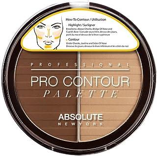 Absolute New York Pro Contour Palette Dark, 18 gm
