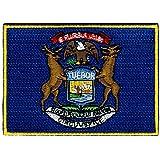 Michigan State Flag...image