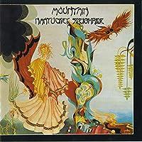 Nantucket Sleighride by Mountain (2003-04-08)