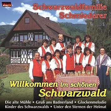 Willkommen im schönen Schwarzwald