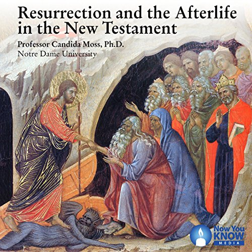 Resurrection and the Afterlife in the New Testament audiobook cover art