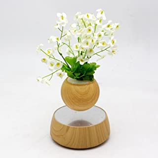 Levitation Wooden Bonsai Pot for Home and Office Decorations-Creative Prsent Floating air Bonsai